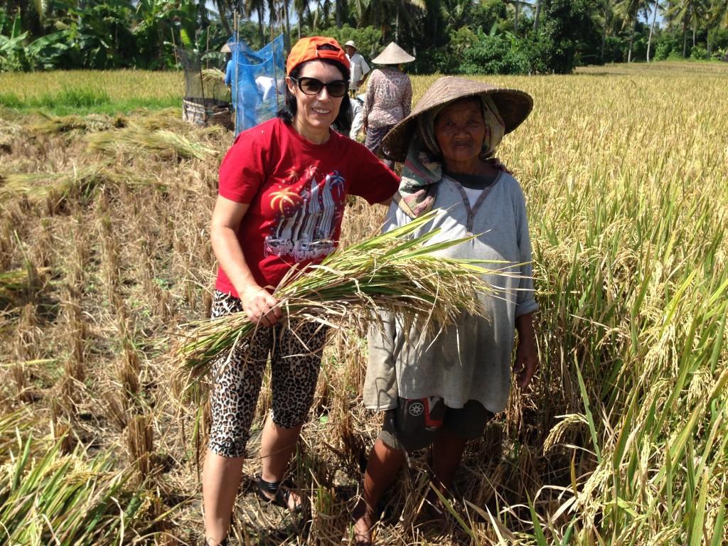 Отчет по целям - Рисовые поля Бали