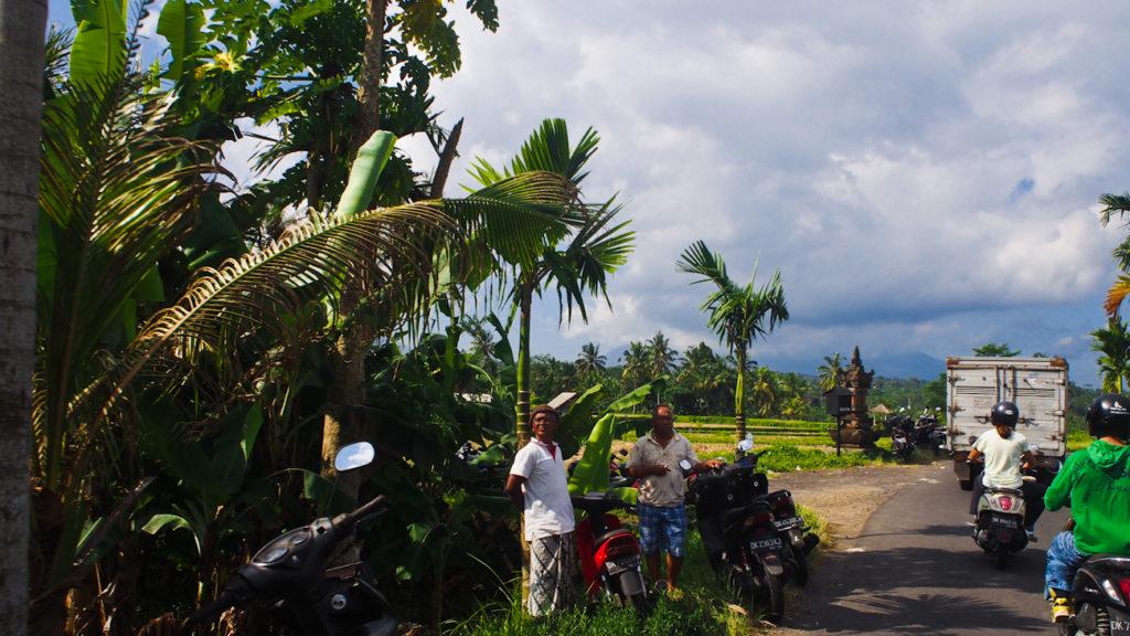 Центр острова Бали